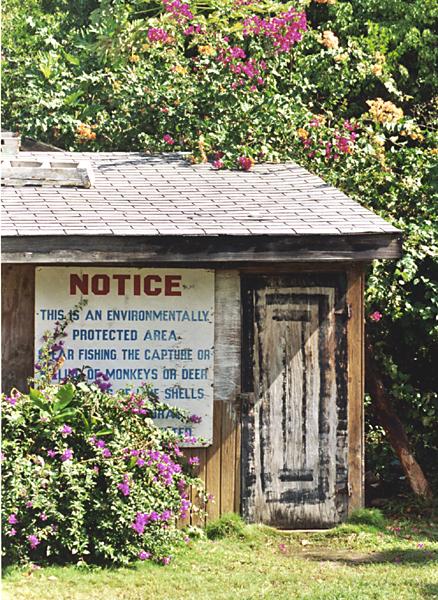 shack at turtle beach